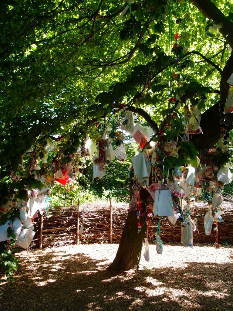 Suttetræ, Frederiksberg Park, Copenhagen, Denmark