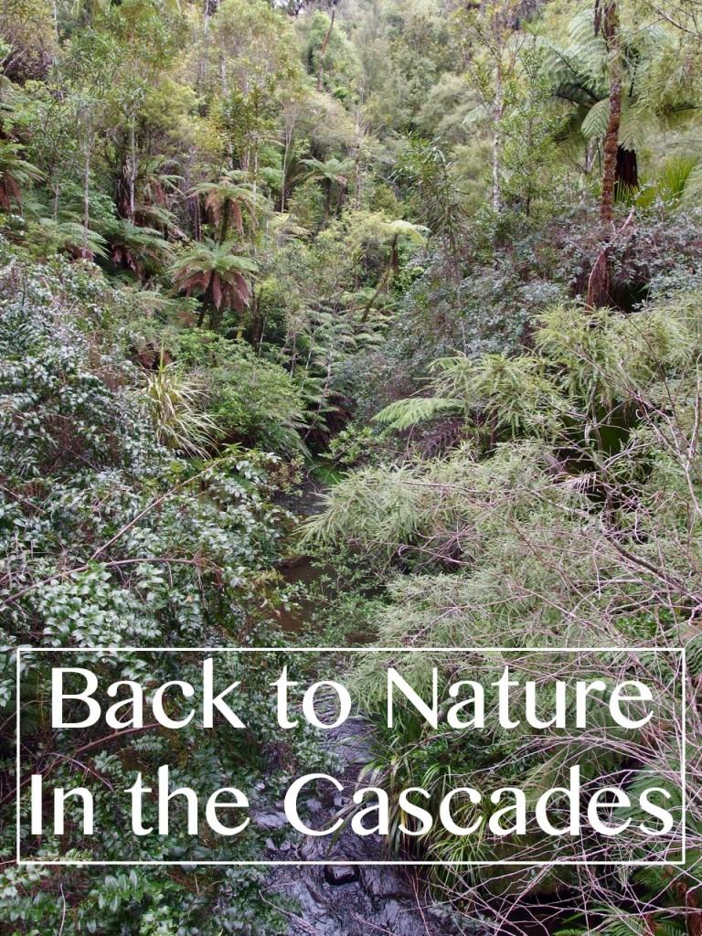 Cascades, Waitakere, Auckland, New Zealand - Two Feet, One World