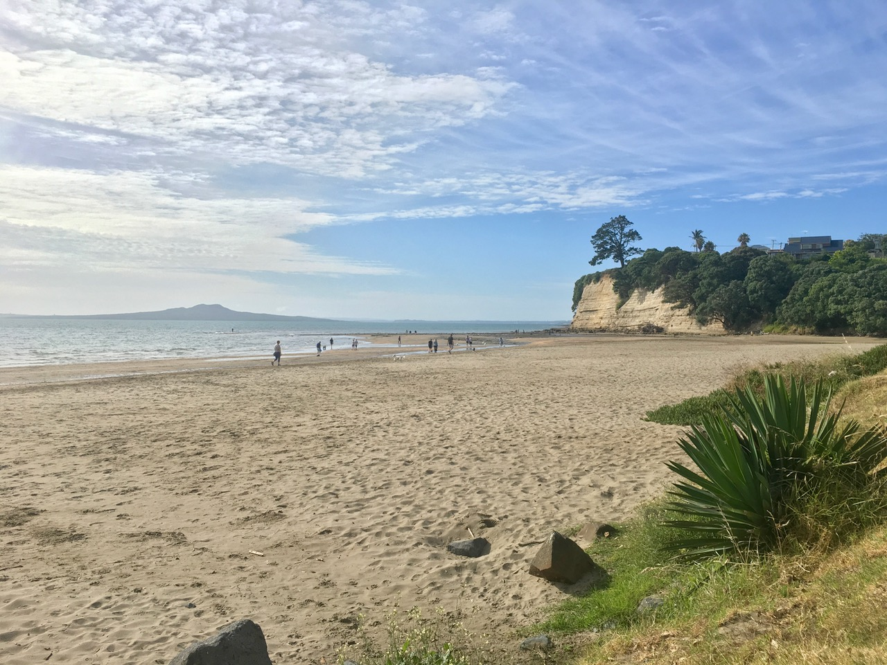 Browns Bay beach, Auckland, New Zealand