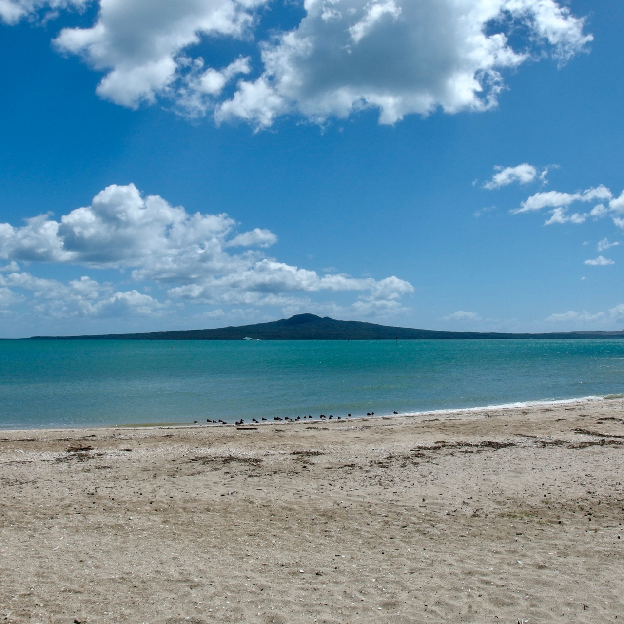 Rangitoto, Auckland, New Zealand