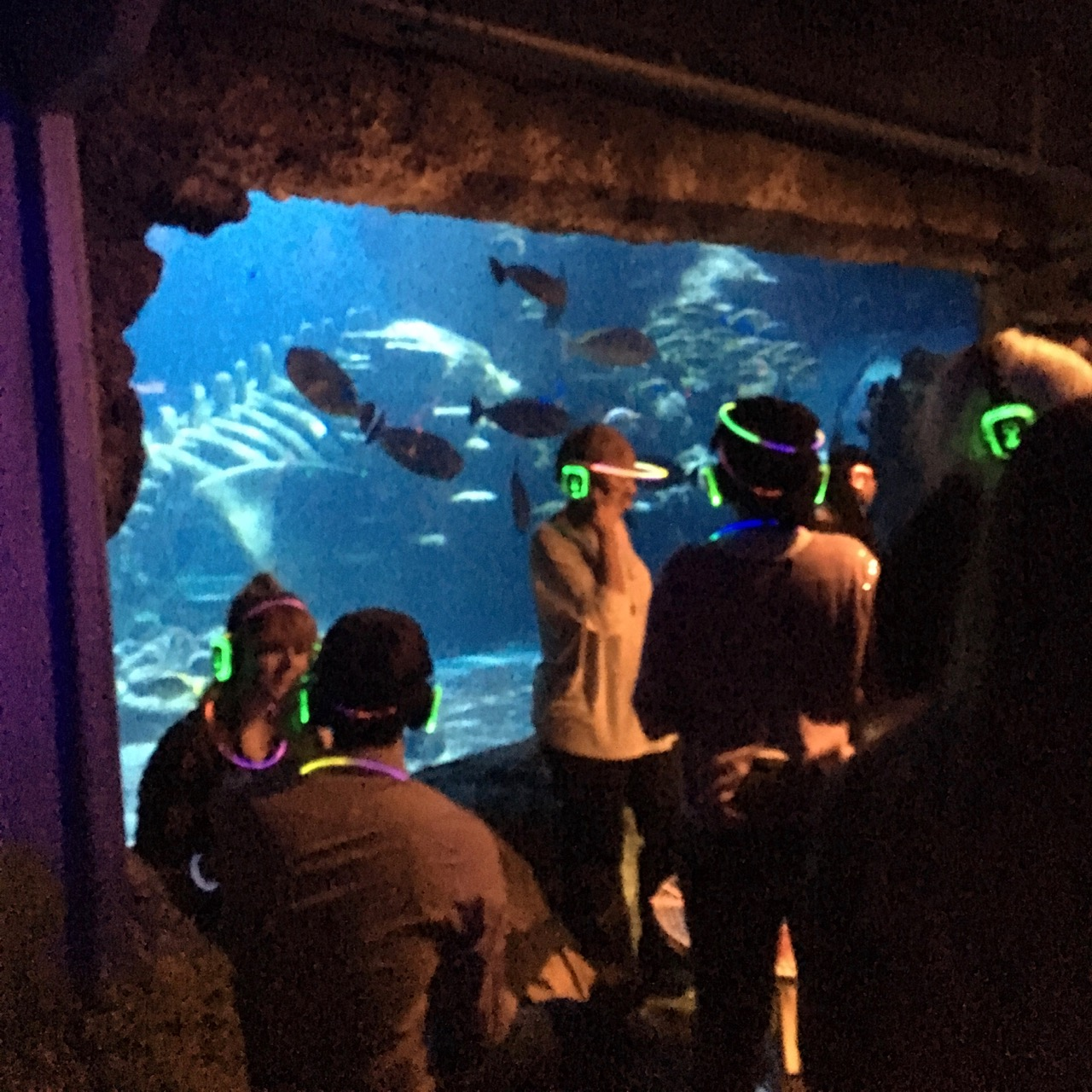 Silent Disco, London Aquarium