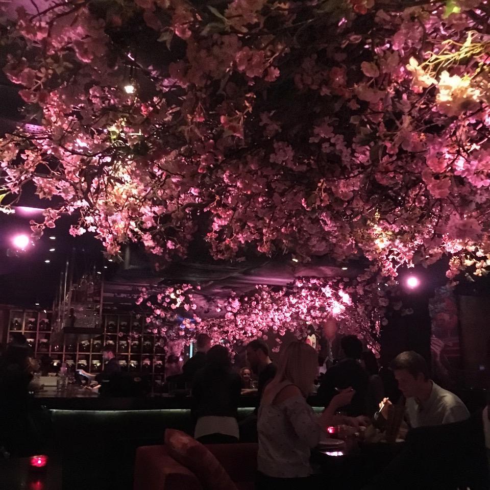 Sakura, Roka, London