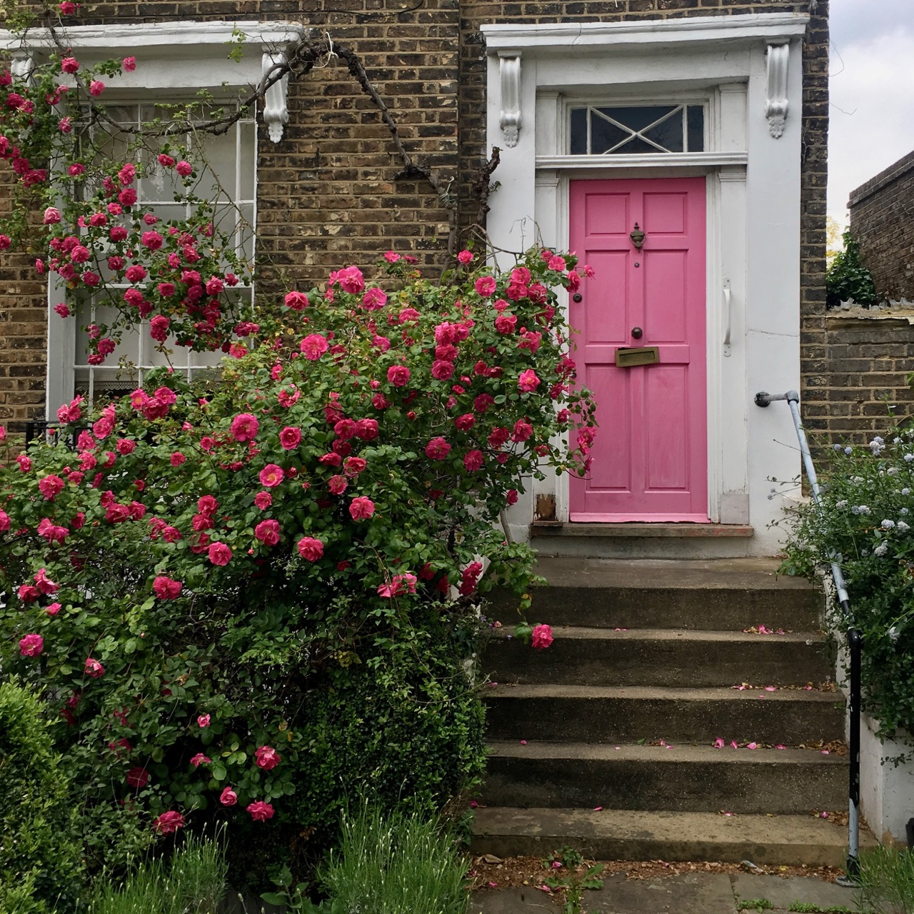 Pink door, Islington, London