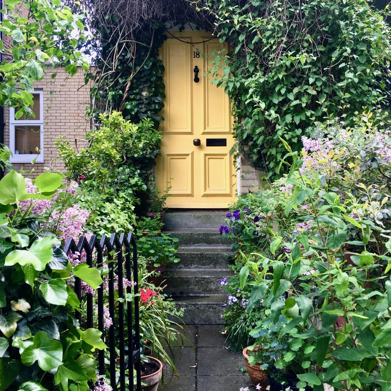 Yellow Door, Hampstead, London