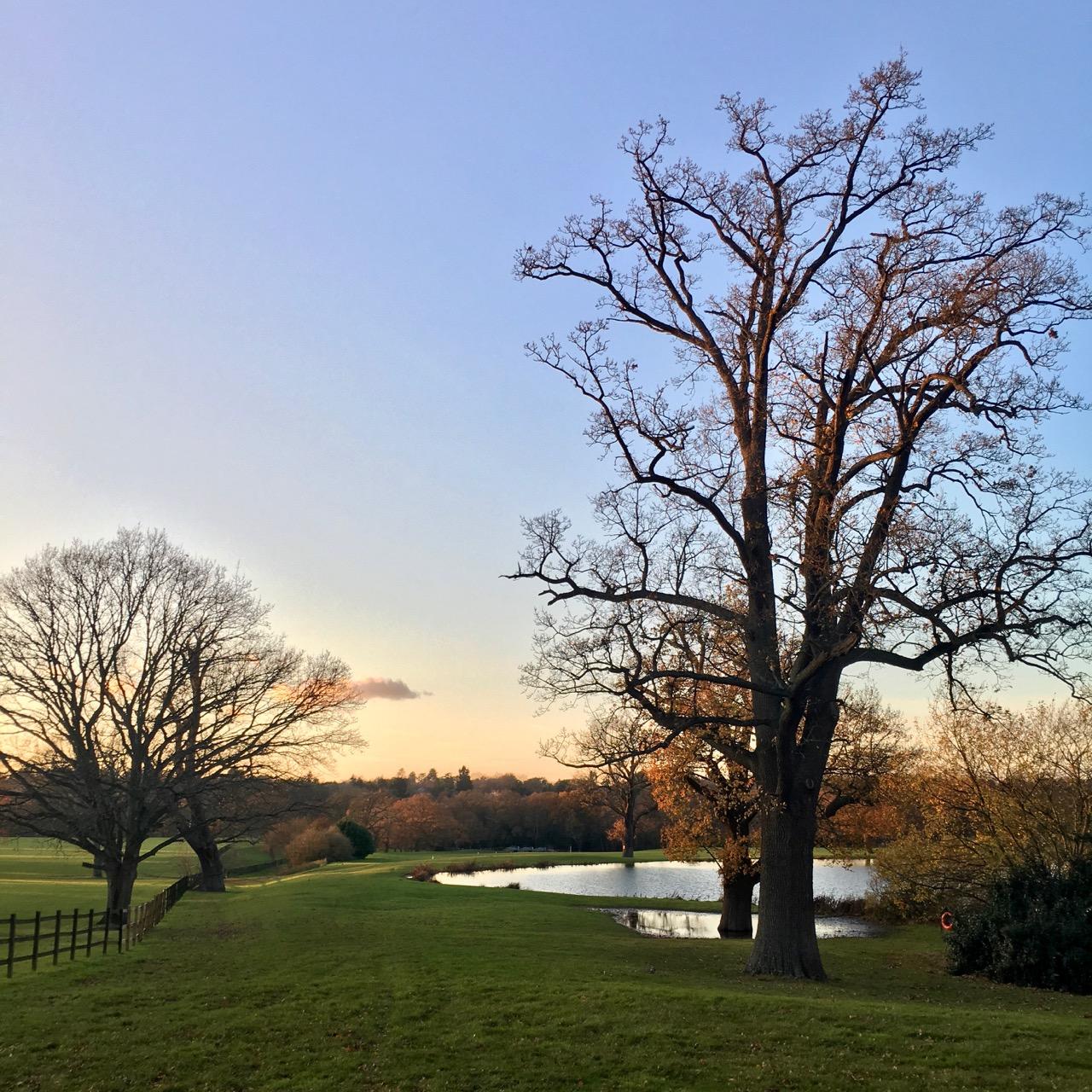 Ascot countryside sunset, England