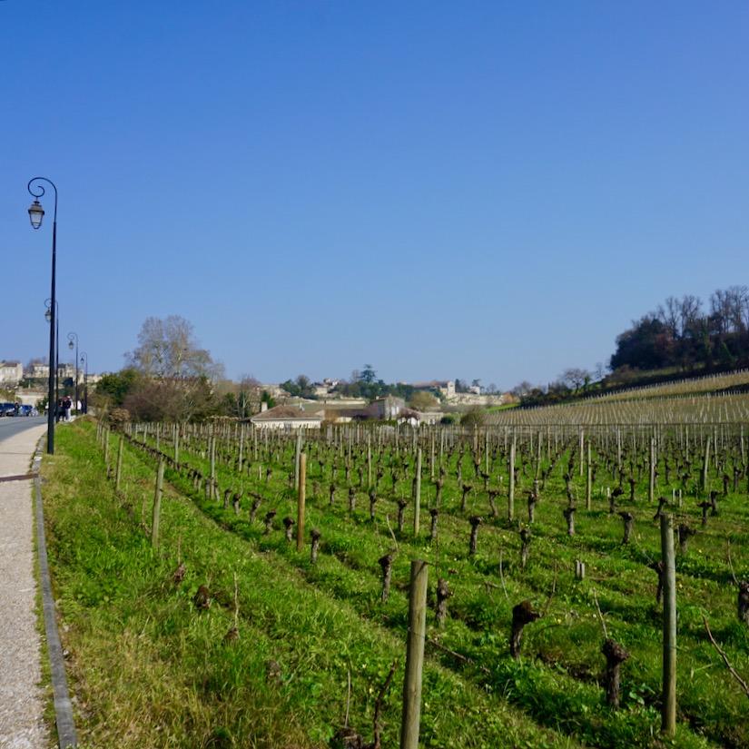 Saint Emilion, Bordeaux, France